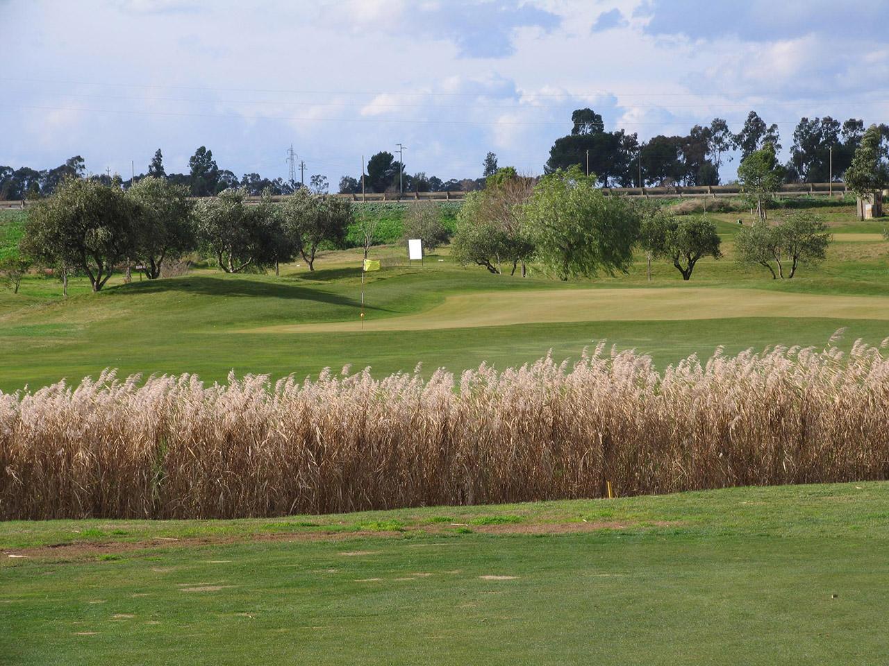 Golf-Club-Metaponto-2-1