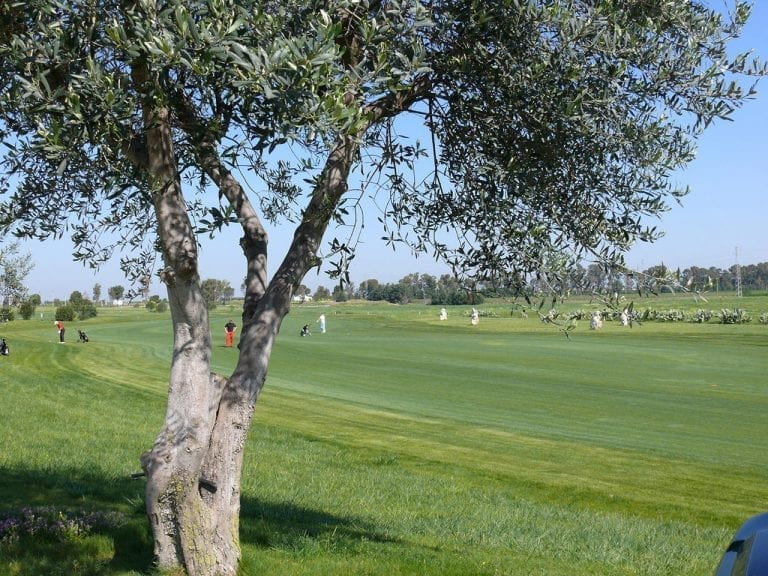 Golf Club Metaponto