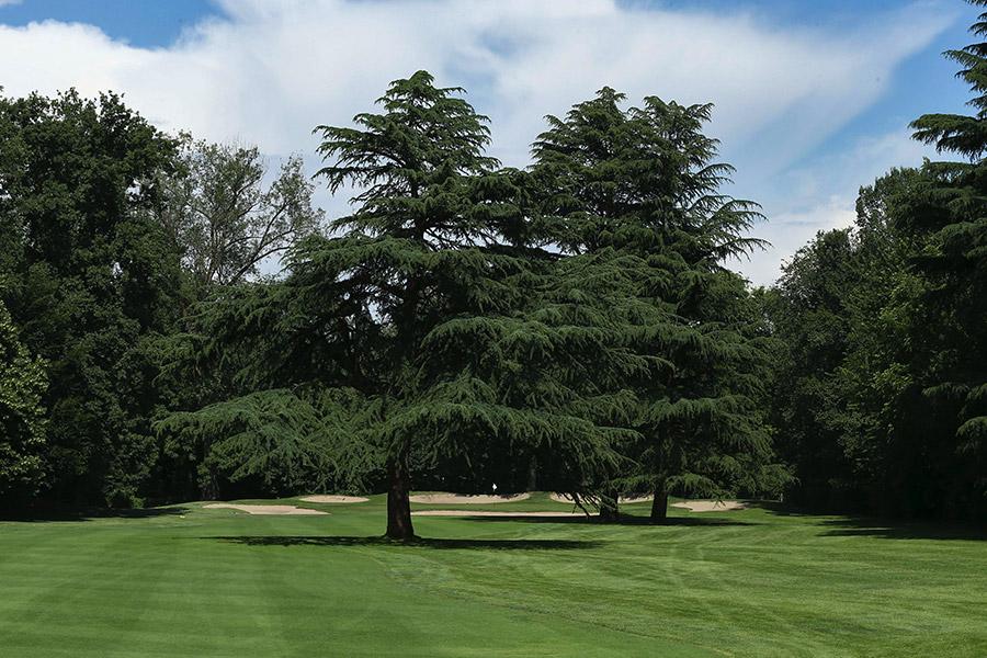 milano-golf